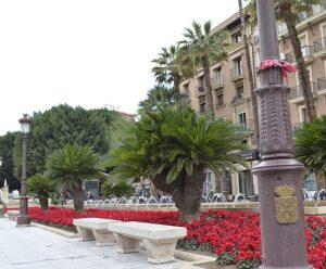 Prointer Murcia